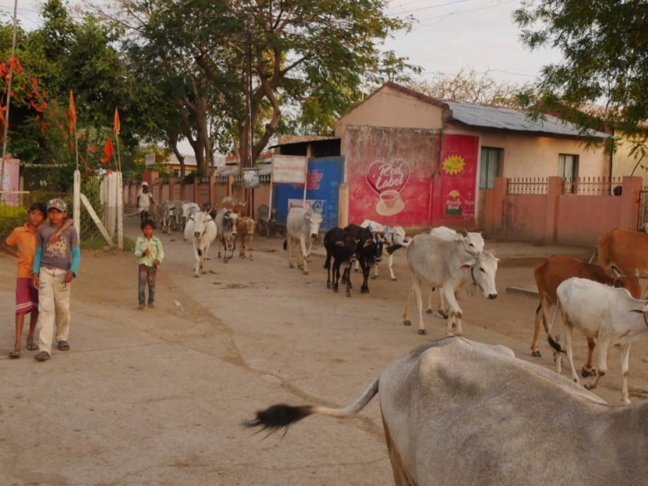 Scene of village street